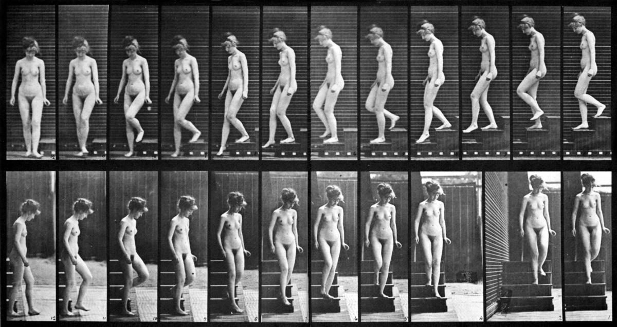 Standard female nude motion study by eadweard muybridge  2