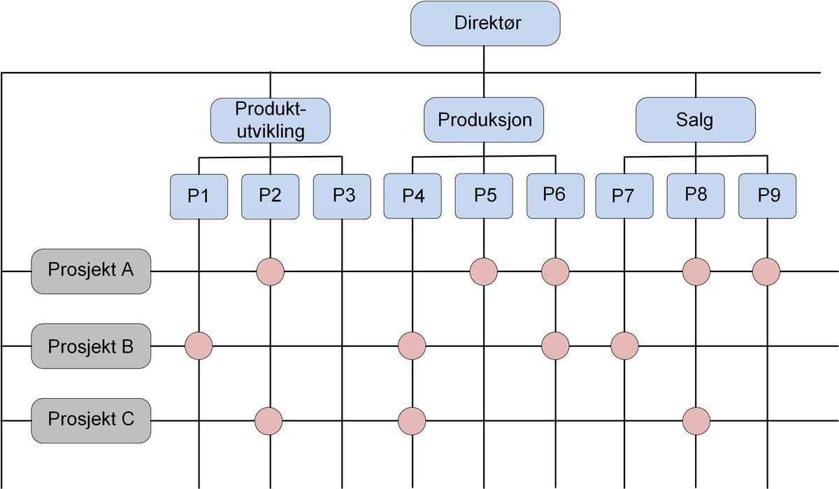 Standard matriseorganisasjon