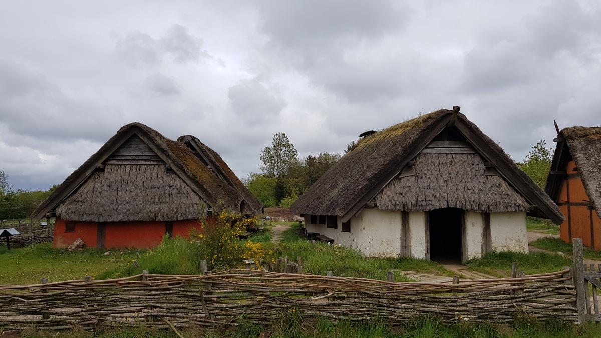 Standard ribe vikingecenter   tinghus   skomagerhus 2 1