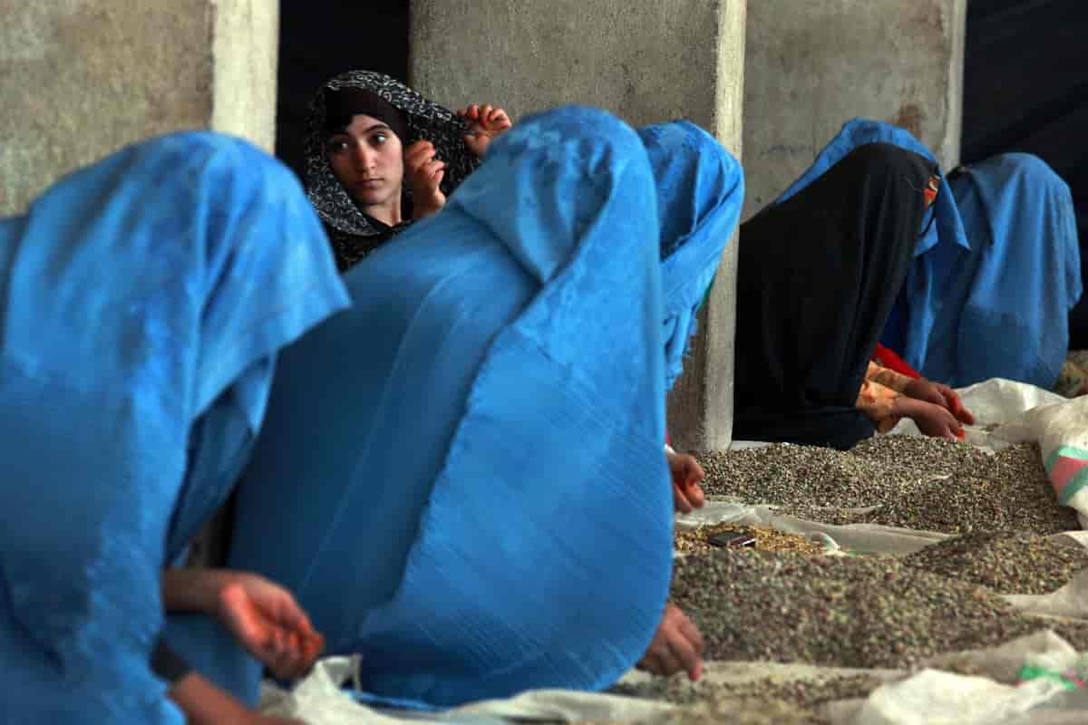 Afghanistan – Store norske leksikon