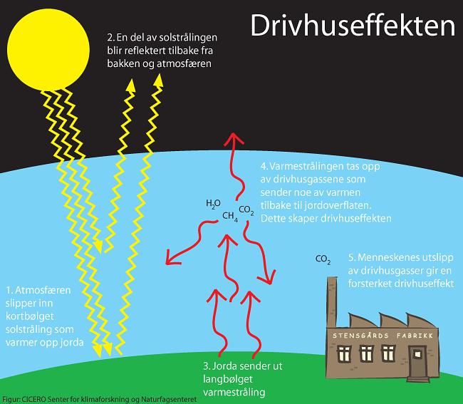 Standard drivhuseffekten1