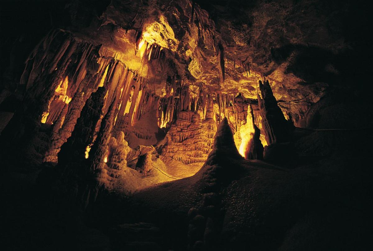 Standard grotte