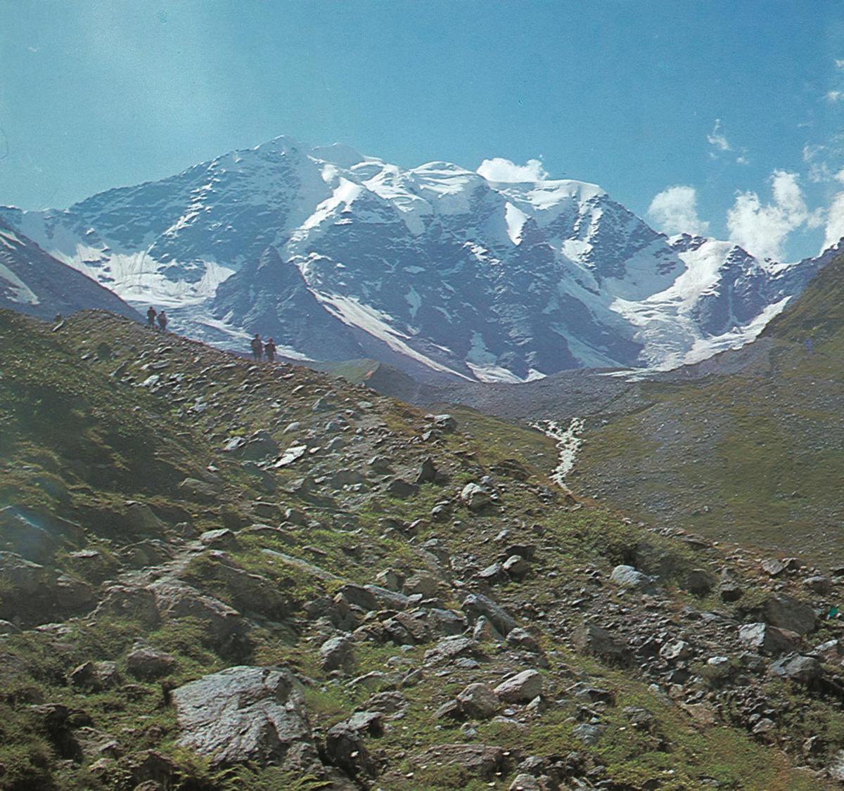 Standard kaukasus
