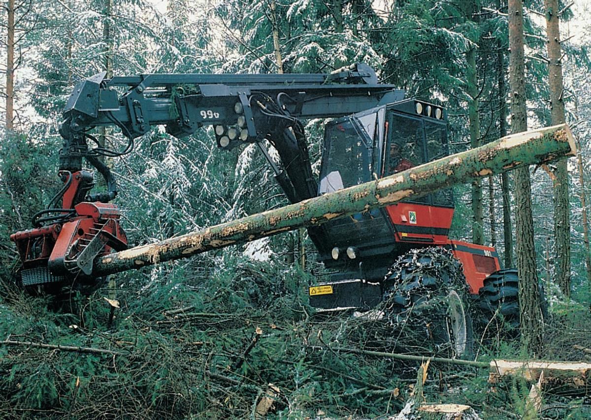 Standard norge skogebruk