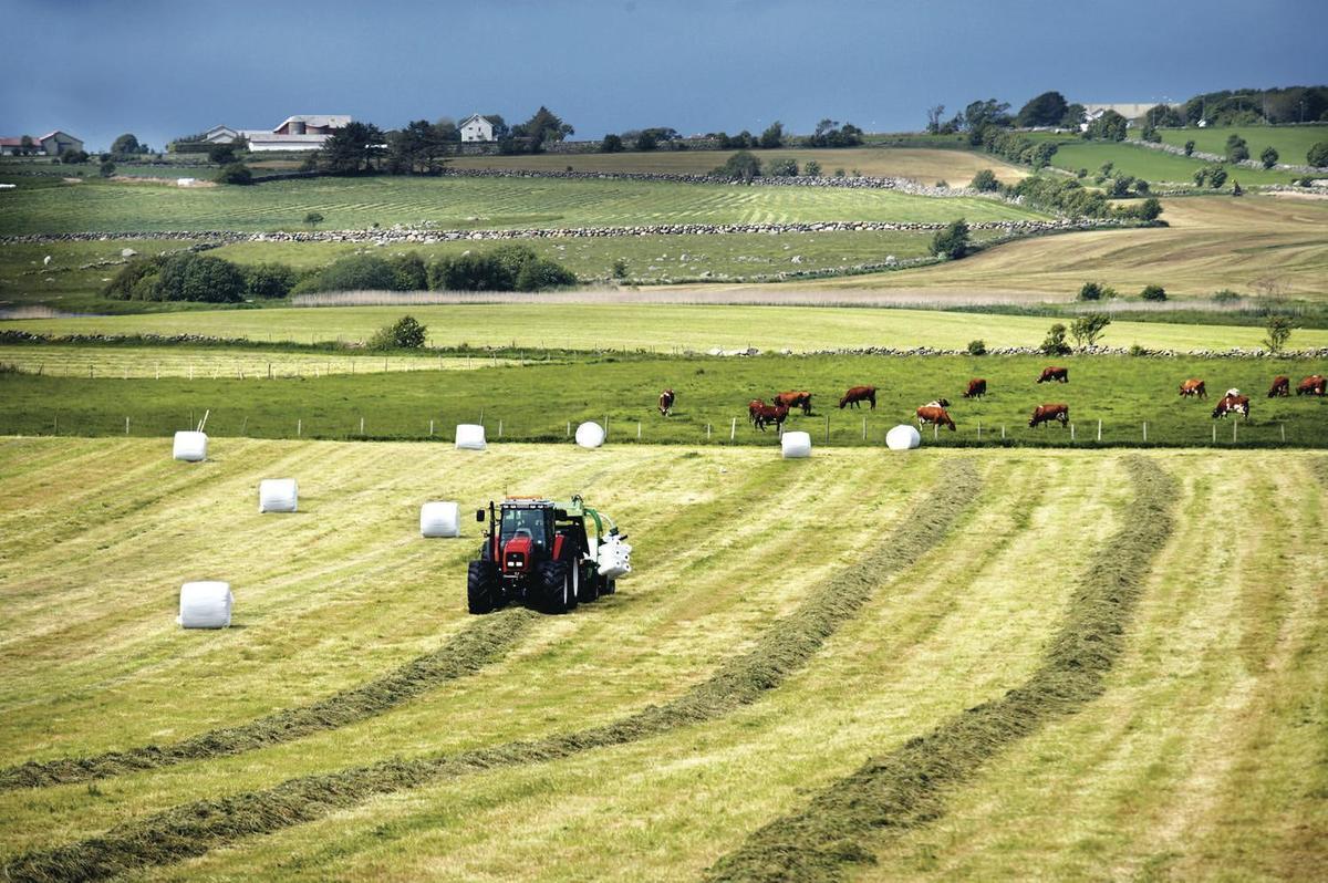 Standard norge jordbruk