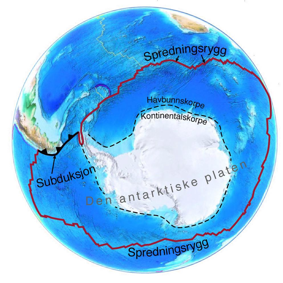 Standard antarctica2
