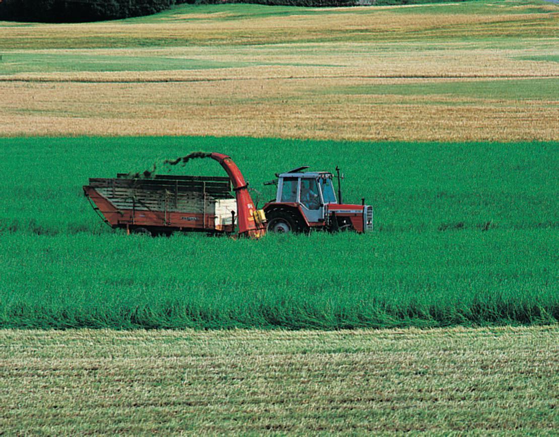 Standard jordbruk1
