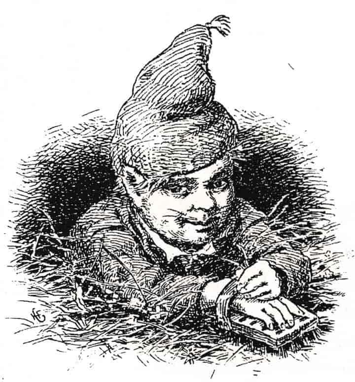 nisse – Store norske leksikon